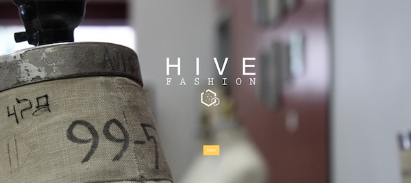 Hive Fashion: Translating Interest Into Career Opportunity