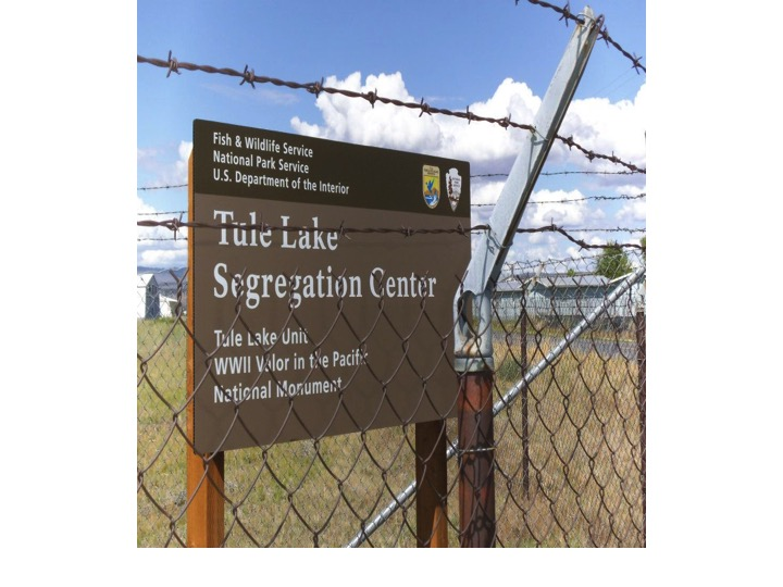 From the Tule Lake Segregation Center to the Virtual World