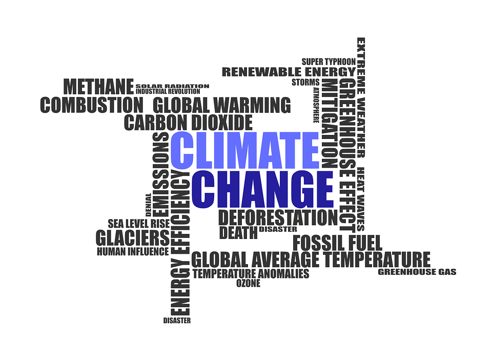 Climate Change Book Clubs: Engaging Citizens of the Anthropocene Through Inquiry and Choice